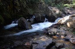 Cachoeira Pedro David - São Francisco Xavier - SP